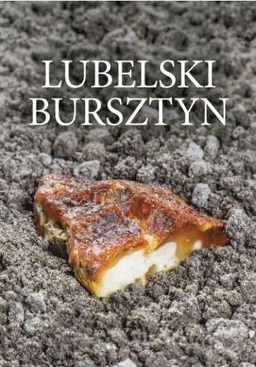 Lubelski_bursztyn._Znaleziska__geologia__zloza__perspektywy_tw.