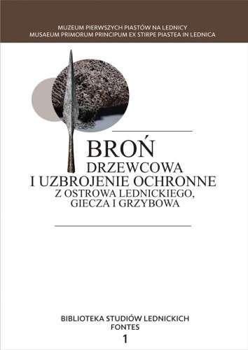 Bron_drzewcowa_i_uzbrojenie_ochronne_z_Ostrowa_Lednickiego__Giecza_i_Grzybowa
