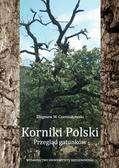 Korniki_Polski._Przeglad_gatunkow